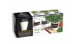 KIT CULTURE DE FINES HERBES