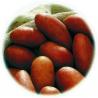 Pomme de Terre  Chérie  - 25 Plants