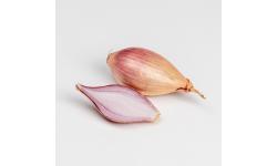 Oignon rosé Rosanna - bulbes  -  500g
